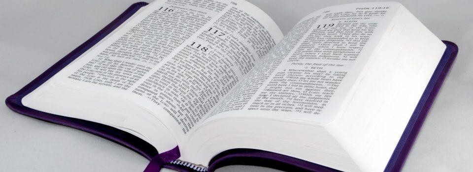 open-bible - http://173.247.246.13/~rccgzoelife/